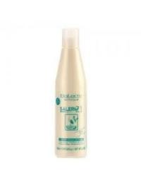 SALERM 21 - 250 ml.
